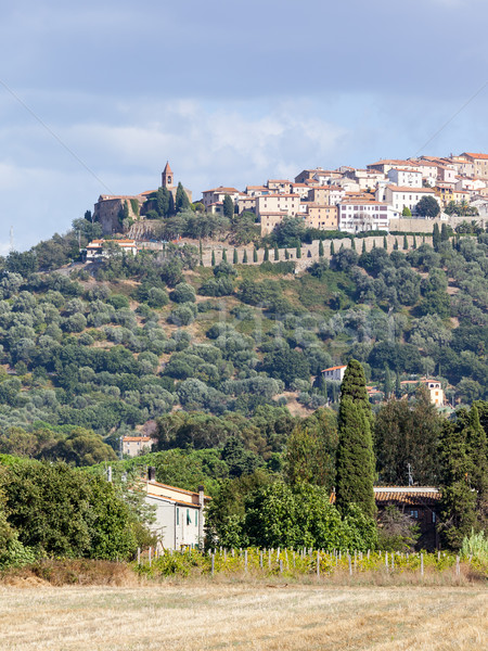 Montepulciano Stock photo © magann
