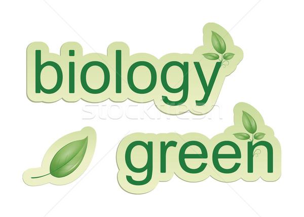 Grünen Biologie Bild Web-Icons Blatt Business Stock foto © magann