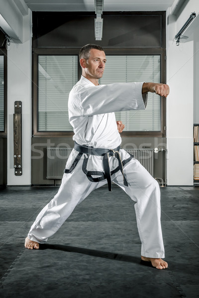 martial arts master Stock photo © magann
