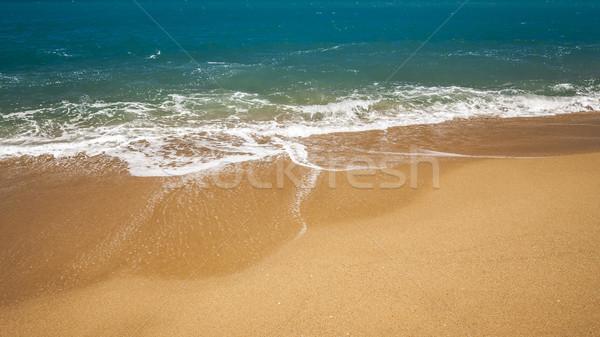 beach Stock photo © magann