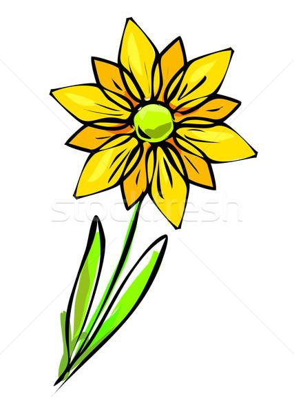 黄色の花 画像 いい 自然 背景 美 ストックフォト © magann