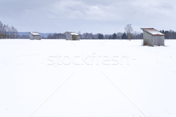 Nieve cubierto paisaje tres imagen Foto stock © magann
