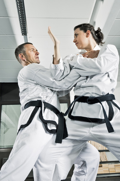 martial arts fighters Stock photo © magann