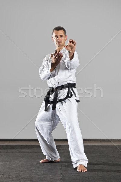 Küzdősportok mester kép férfi sport egészség Stock fotó © magann
