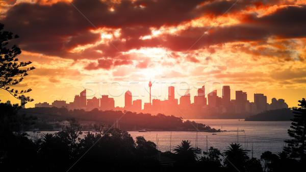 Stock fotó: Sydney · naplemente · kép · gyönyörű · panorámakép · ház