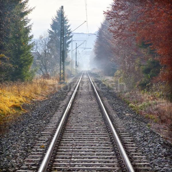 railway Stock photo © magann
