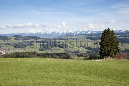 bavarian alps Stock photo © magann