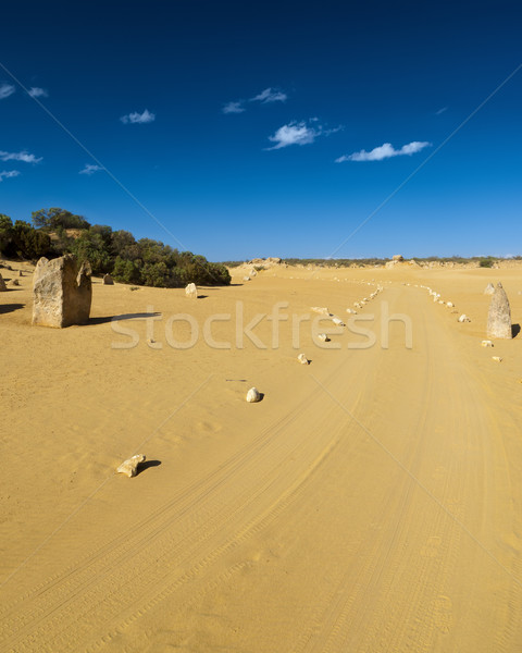 desert road Stock photo © magann
