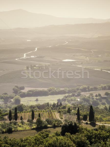 Toscana imagen paisaje Italia cielo árbol Foto stock © magann