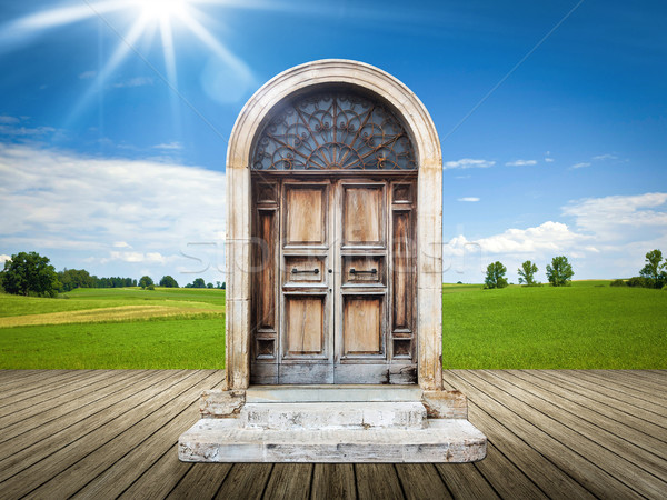 landscape with an old door Stock photo © magann