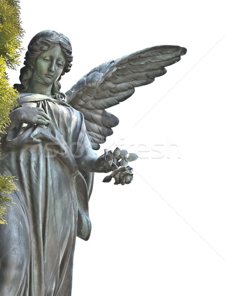 angel Stock photo © magann