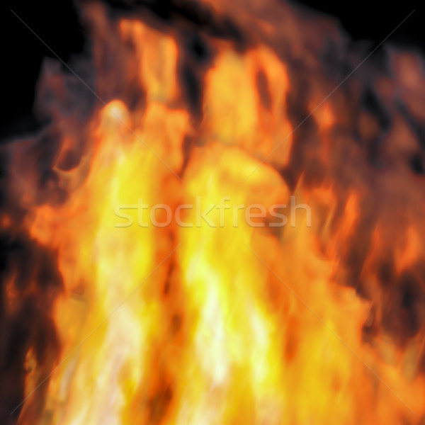 fire background Stock photo © magann