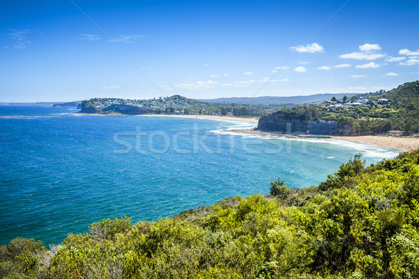 Sydney Australië strand afbeelding mooie blauwe hemel Stockfoto © magann