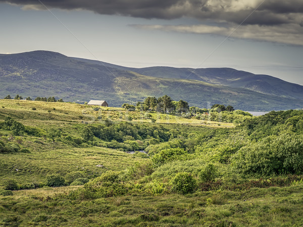 Ring of Kerry Stock photo © magann