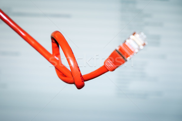 red networking cable with a knot Stock photo © magann