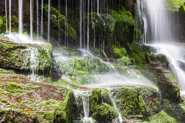 çağlayan tazmanya görüntü güzel doğa alan Stok fotoğraf © magann