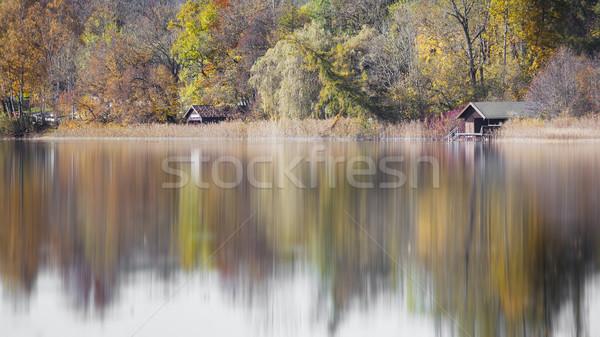 autumn scenery at the lake Stock photo © magann