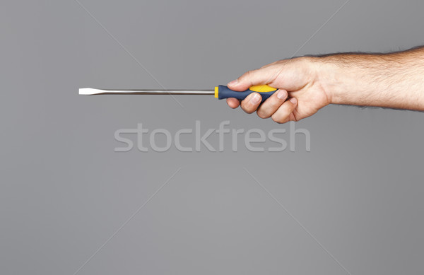 screwdriver Stock photo © magann