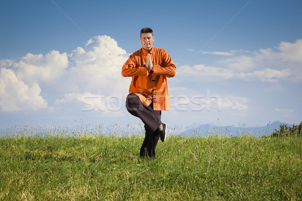 Qi-Gong outdoor Stock photo © magann