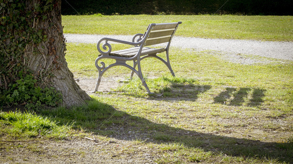 lonely bench in a park Stock photo © magann