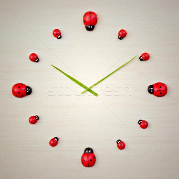 Коровка часы изображение красивой лет зеленый Сток-фото © magann