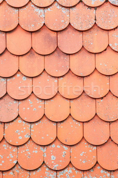 roof background Stock photo © magann