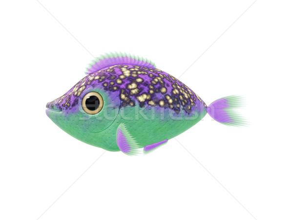 Purple зеленый рыбы иллюстрация Cartoon Cute Сток-фото © magann