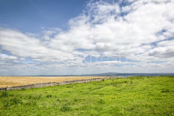 Irlandês paisagem imagem belo céu natureza Foto stock © magann
