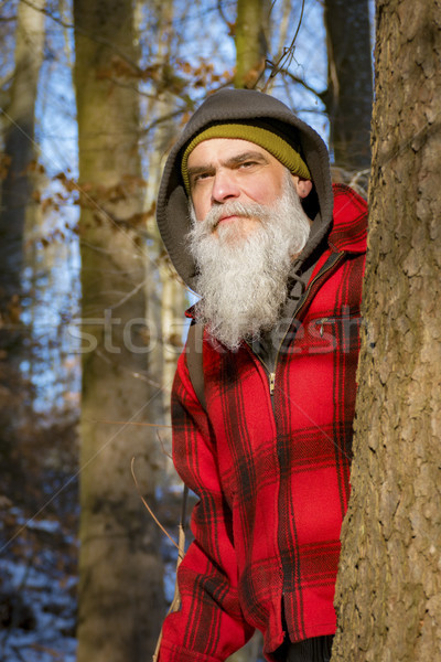 a gray bearded lumberjack in the woods Stock photo © magann