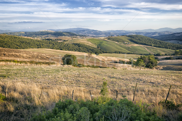 Toscane paysage belle Italie ciel arbre Photo stock © magann