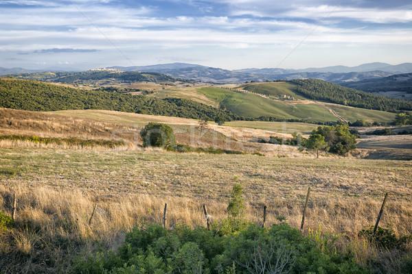 Toszkána tájkép gyönyörű Olaszország égbolt fa Stock fotó © magann