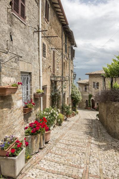 typical italian city street Stock photo © magann