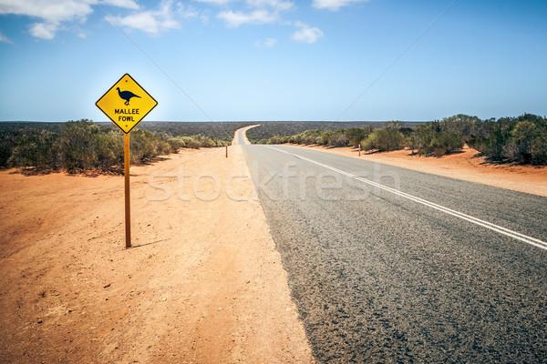 Ausztrália jelzőtábla baromfi kép égbolt természet Stock fotó © magann