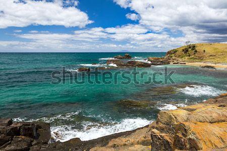 Tasmanie image belle vue herbe nature Photo stock © magann