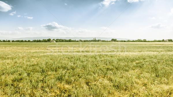 panoramic view in Italy Umbira near Assisi Stock photo © magann