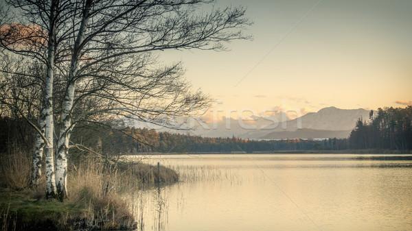 Pôr do sol paisagem luz laranja outono panorama Foto stock © magann