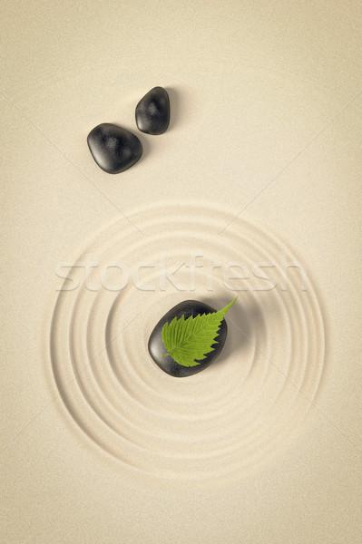 Zen afbeelding mooie zwarte stenen blad Stockfoto © magann