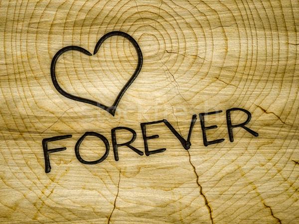 Ahşap kalp sevmek sonsuza dek marka örnek Stok fotoğraf © magann