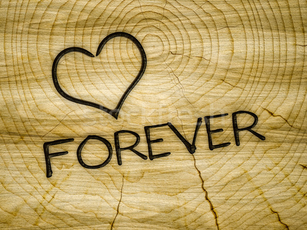 сердце любви навсегда брендинг иллюстрация Сток-фото © magann