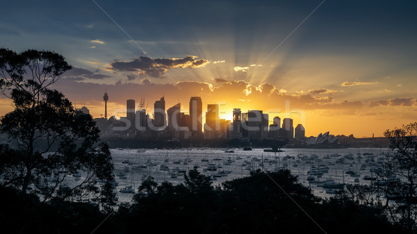 Sydney pôr do sol imagem belo panorâmico edifício Foto stock © magann