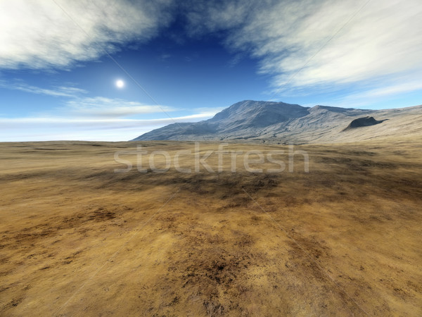 desert Stock photo © magann