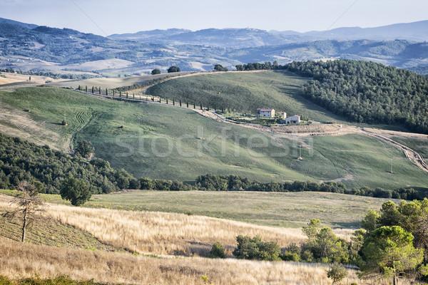 Foto stock: Toscana · paisaje · hermosa · Italia · cielo · árbol