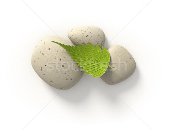 üç taşlar görüntü parlak yeşil yaprak yaprak Stok fotoğraf © magann