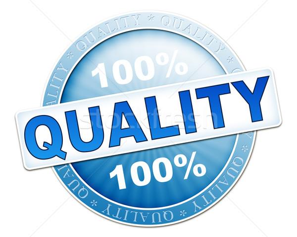 quality button blue Stock photo © magann