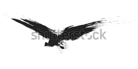 grunge bird Stock photo © magann