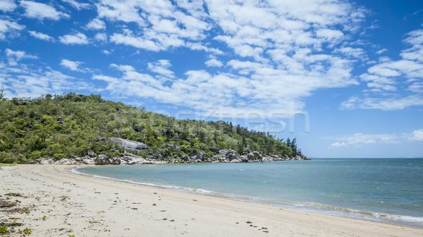 Mágneses sziget Ausztrália kép fa felhők Stock fotó © magann