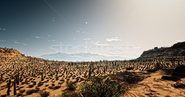 Arizona kép sivatag égbolt fa természet Stock fotó © magann