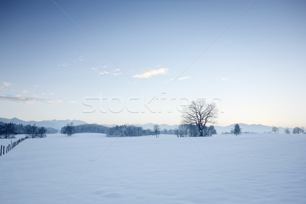 winter scenery Stock photo © magann