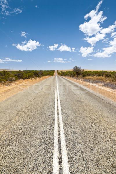 road Stock photo © magann