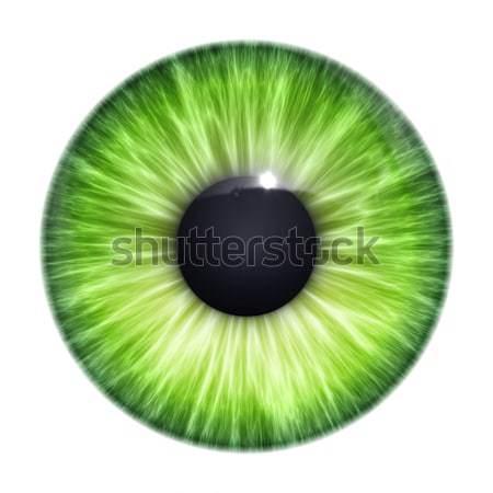 Verde occhi texture immagine nice luce Foto d'archivio © magann
